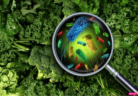 Medidas simples em casa podem manter o vírus da COVID-19 longe dos alimentos